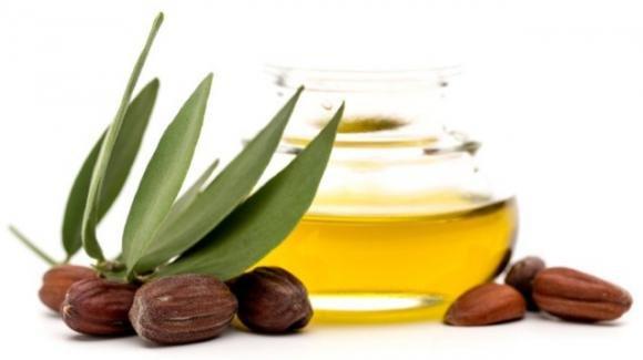 Olio di jojoba: usi e benefici e proprietà