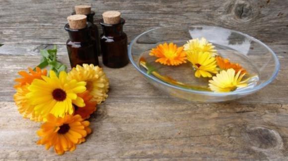 Come alleviare i dolori mestruali con la tintutura madre di calendula