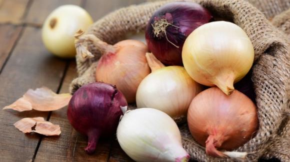 Cipolle: proprietà, benefici e controindicazioni