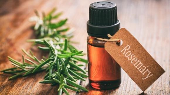 Olio essenziale di rosmarino: come utilizzarlo per il proprio benessere e quali sono le controindicazioni