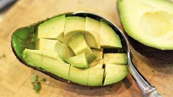 Coltivare una pianta di avocado sul balcone