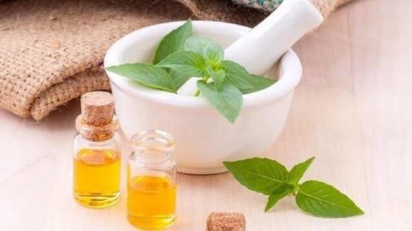 Cosmesi naturale fai da te: il basilico e come usarlo nella cosmetica