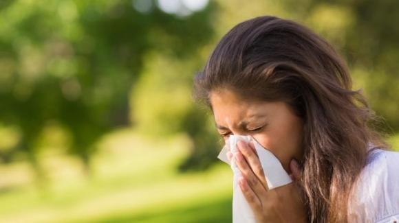 Allergia alle graminacee: cause, fattori di rischio, diagnosi, cura e prevenzione