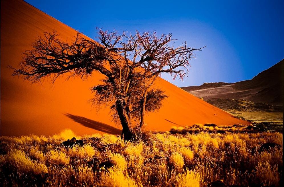Alla scoperta del deserto rosso della Namibia