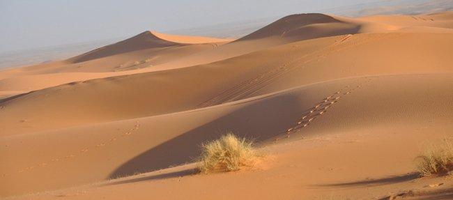 Sud della Tunisia, tour tra oasi e deserto