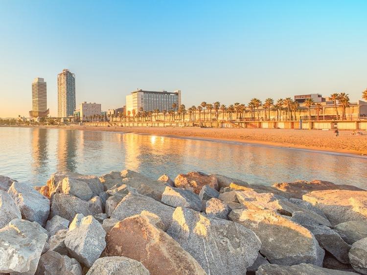 Barceloneta in Spagna: cosa vedere e cosa fare