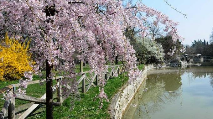 Giardini Margherita di Bologna