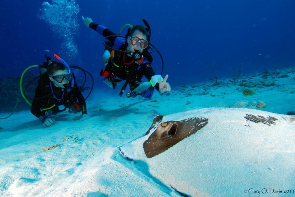 Isole Cayman, per una vacanza tra natura e serenità