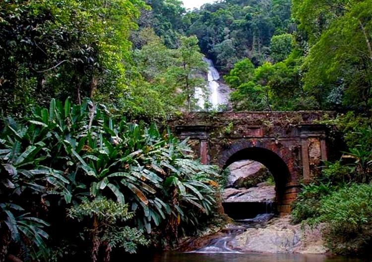 Parco Nazionale di Tijuca a Rio de Janeiro
