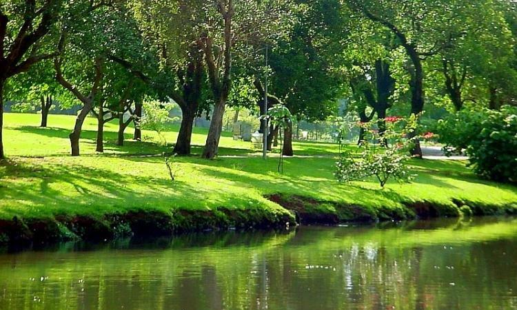 Parco Ibirapuera di San Paolo