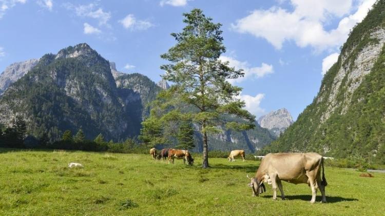 Parco naturale delle Dolomiti Friulane