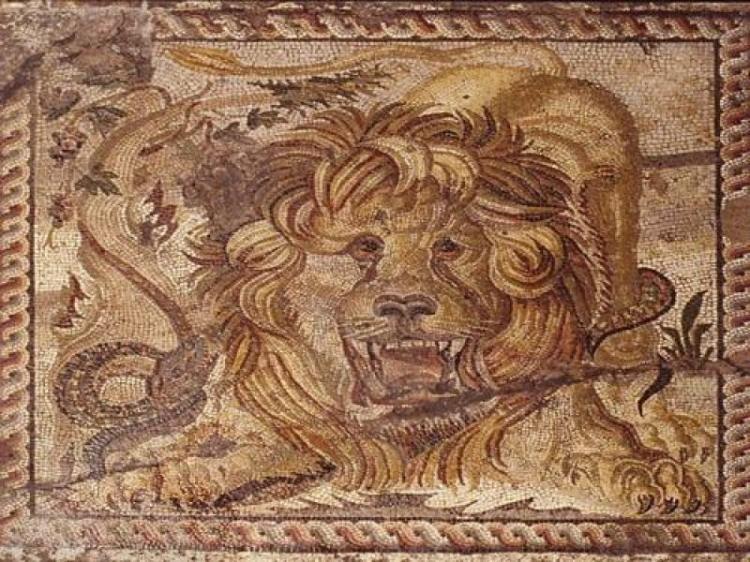 Domus del Leone a Teramo
