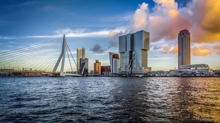 Guida di Rotterdam