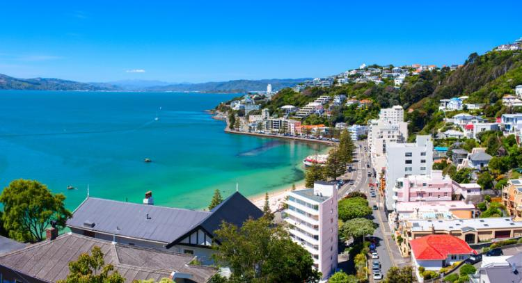 Guida di Wellington
