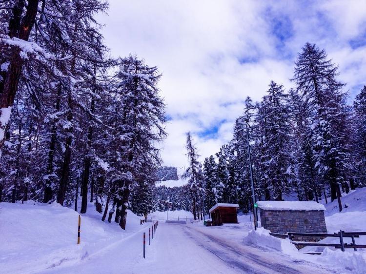 Vacanza a Sankt Moritz e Livigno
