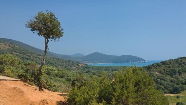 Parco dell'Uccellina, in Maremma: cosa vedere, spiagge e itinerari