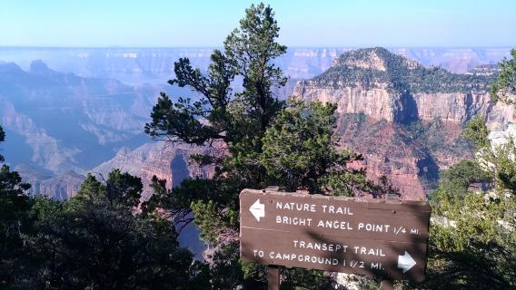 Visita al Grand Canyon, North e South Rim