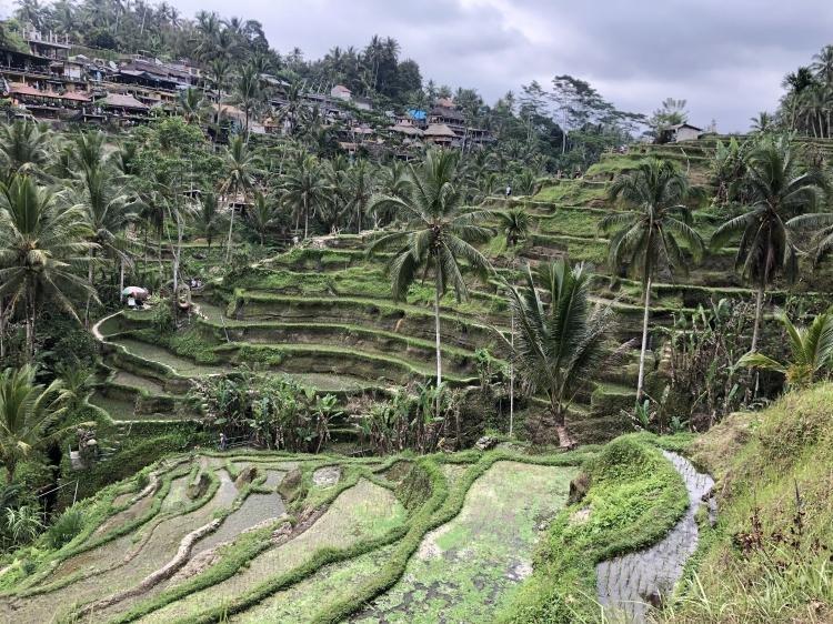 Mind blowing Bali, sorrisi, magia e sorprese
