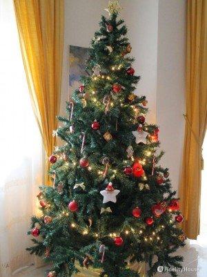 Il mio albero di Natale con i Candy Cane