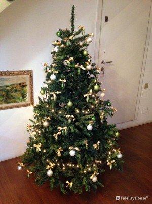Ecco il mio albero di Natale portafortuna