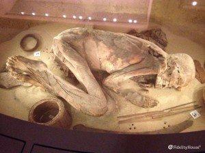 Reperti al Museo Egizio di Torino