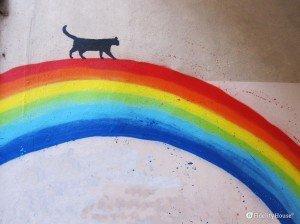 Il gatto e l'arcobaleno, Kenny Random