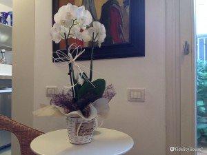 Un'orchidea tutta bianca: un regalo particolarmente gradito