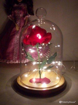 La rosa incantata de La Bella e la Bestia