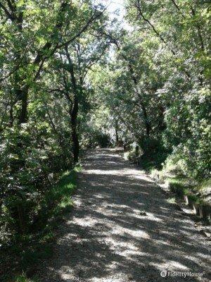 Un sentiero al parco Villa Giulia di Trieste