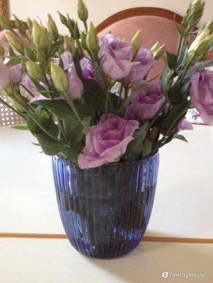 Lisanthium color lilla