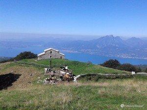 Lago di Garda visto dalla Malga Zocchi (m 1282 s. l. m.)