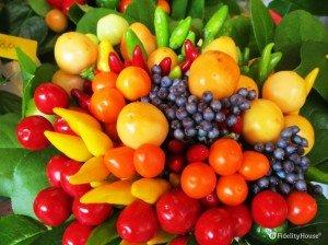 Bacche, frutti e peperoncini per un bel centrotavola