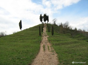 La collina dei cipressi nel Parco del Curone